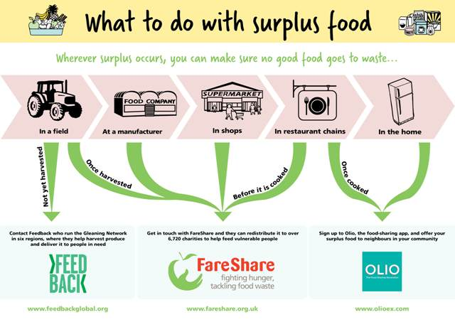 How To Fight Food Waste From Field To Fork Fareshare